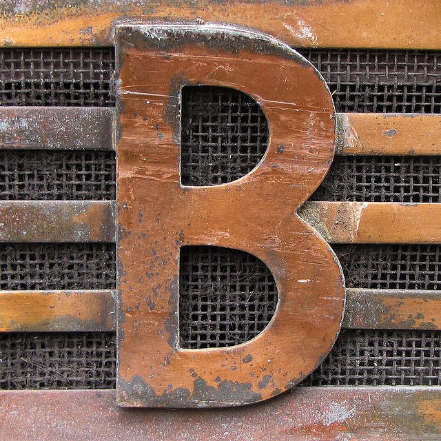 B rustic gate/door.  Cool idea to just find a metal letter for gate and just let it rust.