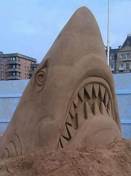 Shark sand Sculpture