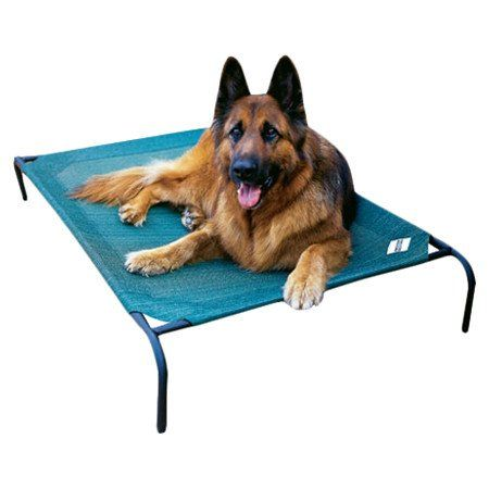 coolaroo elevated indoor and outdoor dog cot large 51u0027w x 32u0027d