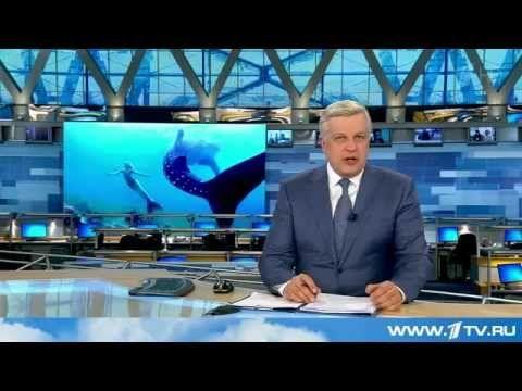 Хвост русалки по телевидению в новостях