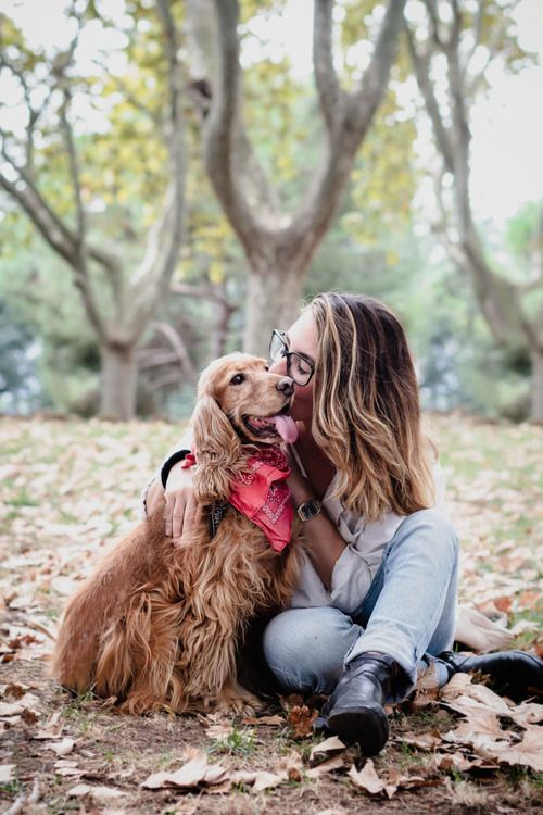 pose with dog