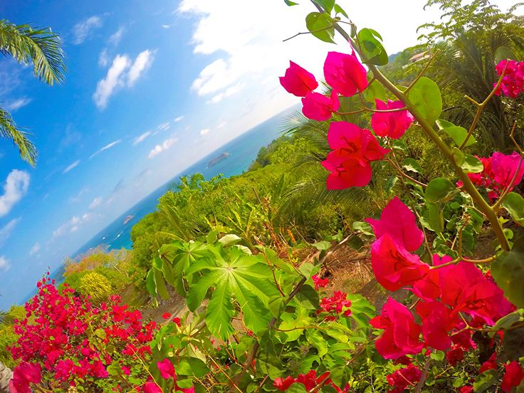 What You Need to Know Before Travel to Costa Rica