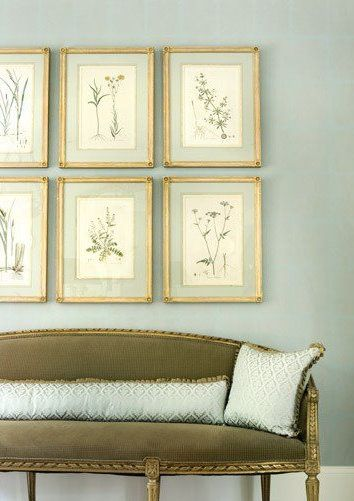 settee, botanicals, green + blue - especially love the frame + mount on these prints