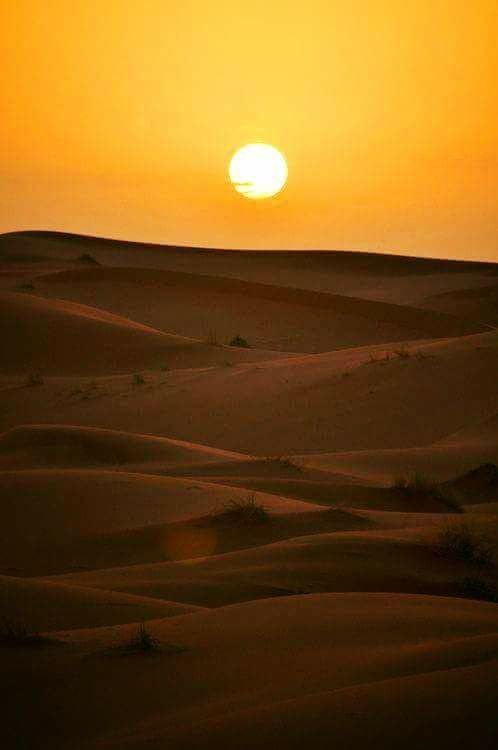 Sahara marocain. Demain pour 5 jours/philippefreynomadesdumonde/photos