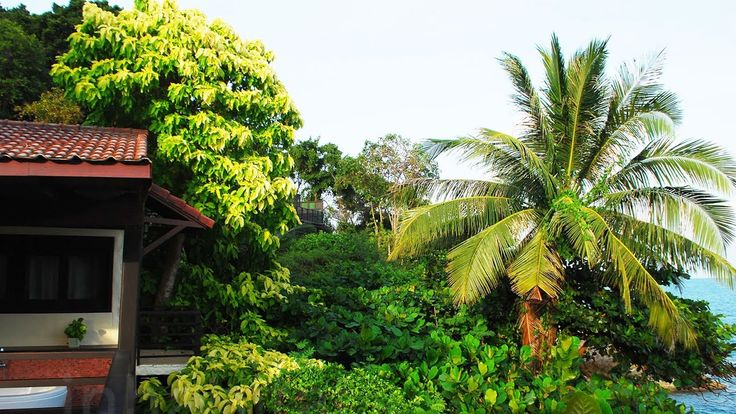The Tongsai Bay Hotel in Ko Samui, Thailand maintains its virtuous mission by growing 100 percent of its produce and turning all food waste into fertilizer and a cleaning solution for its facilities, donating the rest to the island's stray cats and dogs. This breathtaking oasis demonstrates how hotels can thrive within a completely natural habitat.