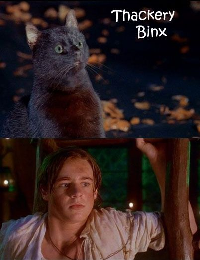 "Thackery Binx from ""Hocus Pocus"", cute in any form!"