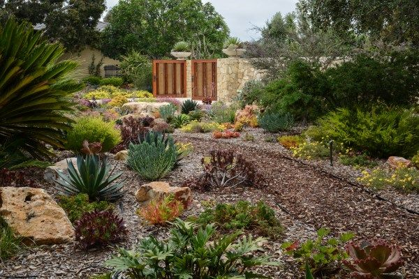 12 best images about waterwise landscaping on pinterest for Water saving garden designs