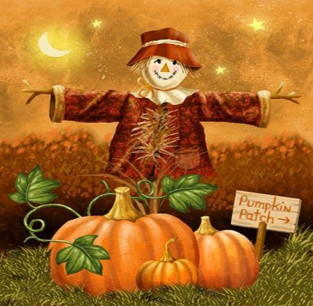 39 best fall pictures images on pinterest autumn - Pumpkin wallpaper fall ...