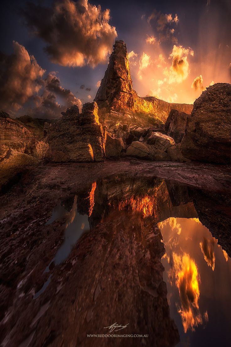 Artistic-realistic nature -  Alone on 500px by Rod Trenchard, Taree,...