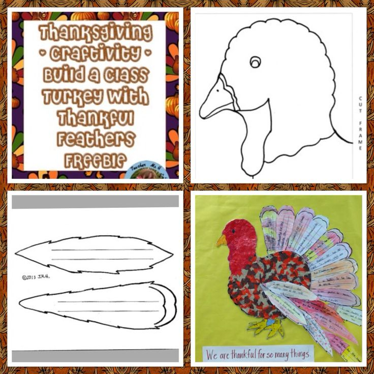 Thanksgiving activity and bulletin board display feather for Turkey template for bulletin board