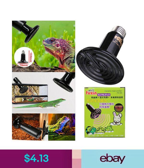 Terrarium Heat Lamps Ebay Pet Supplies Lamp Light Reptiles Reptile Supplies