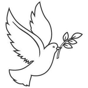 Dove with Olive Branch Graphic