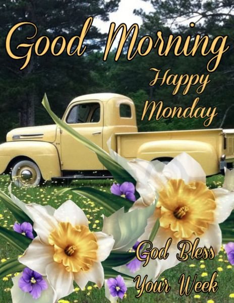 God Bless Your Week - Good Morning Happy Monday Pictures, Photos, and Images for Facebook, Tumblr, Pinterest, and… | Good morning happy monday, Monday greetings, Monday blessings