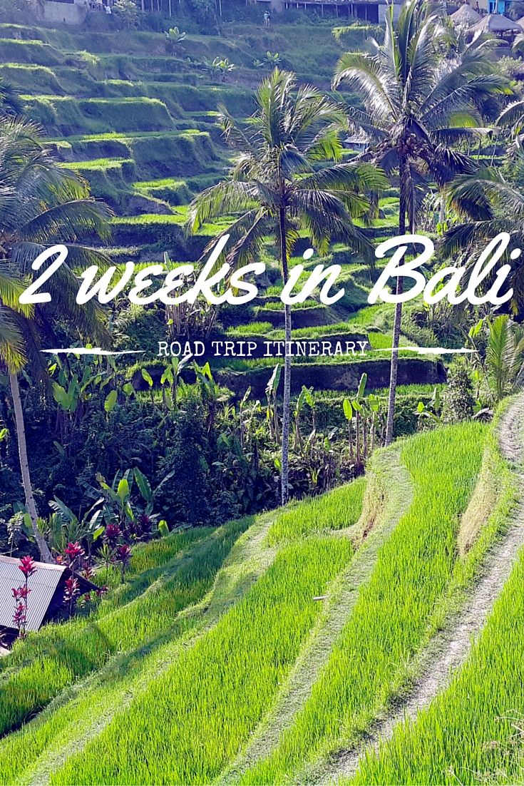 2 week road trip itinerary in Bali - Scuba diving - World Adventure Divers