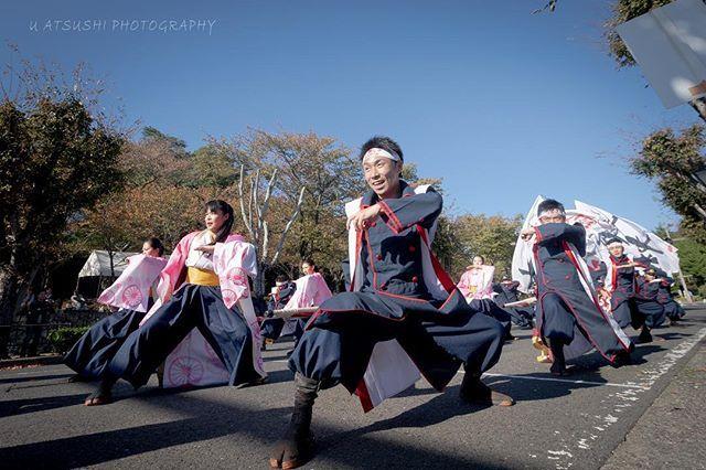 jr九州櫻燕隊ハッシュタグ instagram 写真と動画 九州 パフォーマー パレード