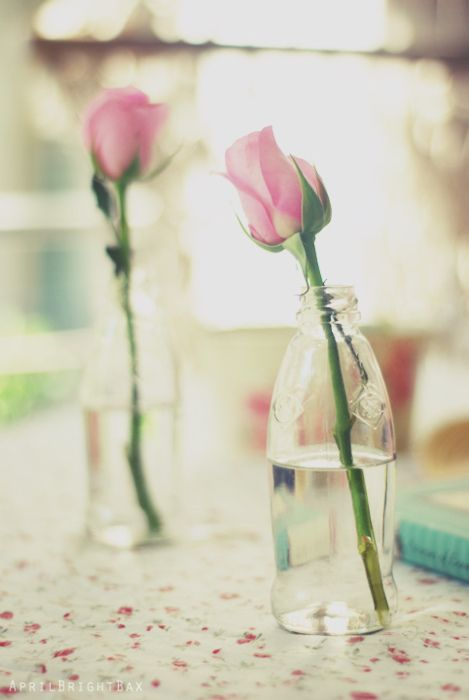 so simple. so sweet. Thinking in a grouping of other assorted center pieces would be adorable