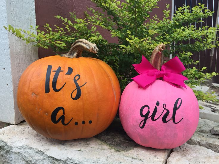 Our fall gender reveal... it's a girl.. pumpkins. A.L.