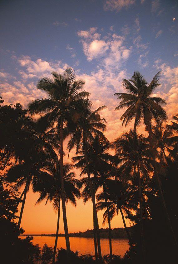 Insider Guide: Cairns #qldblog #tropicalnorth #travel #stageaustralia #australia #queensland #cairns #traineeships #internships #downunder