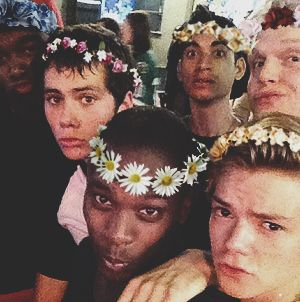 I presenting, the cast of The Maze Runner wears a flower crowns in their heads! HAHAHAHAH! cuteeeeeeee! <3