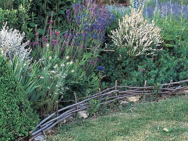 Best Bordure Jardin Noisetier Pictures - Matkin.info - matkin.info