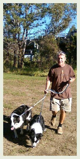 PADDY/PAMMY........A PLEASURE TO WALK! dogsbigdayout.com.au