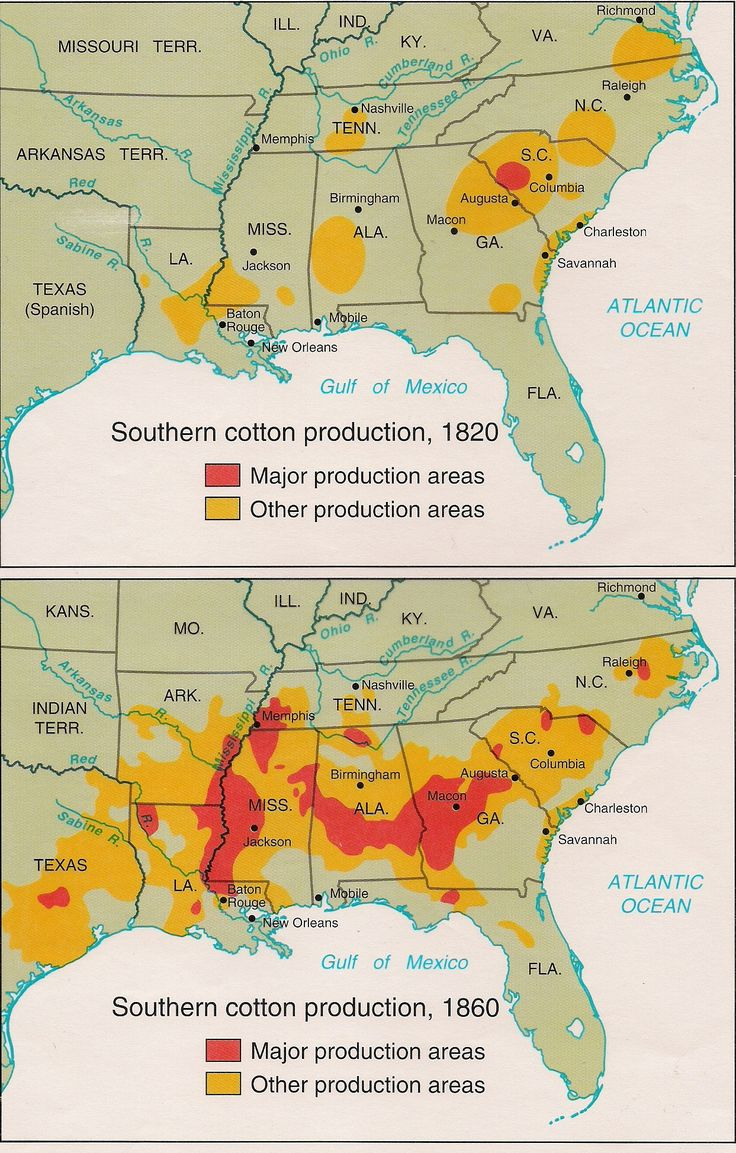 Best Images About Family Tree On Pinterest Dna Genealogy And - Map of america after louisiana purchase