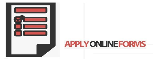 25+ unieke ideeën over Online application form op Pinterest - application form