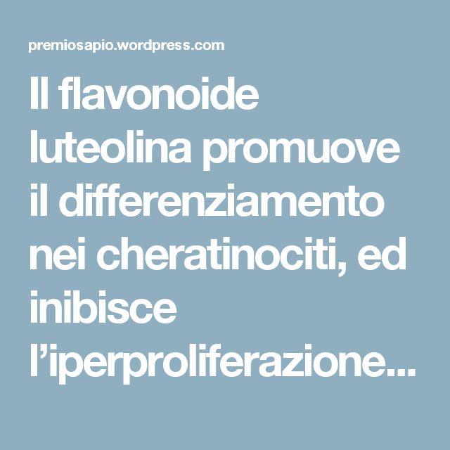 Il flavonoide luteolina promuove il differenziamento nei cheratinociti, ed inibisce l'iperproliferazione, l'infiammazione e l'acantosi tipiche della psoriasi. | Premio Sapio