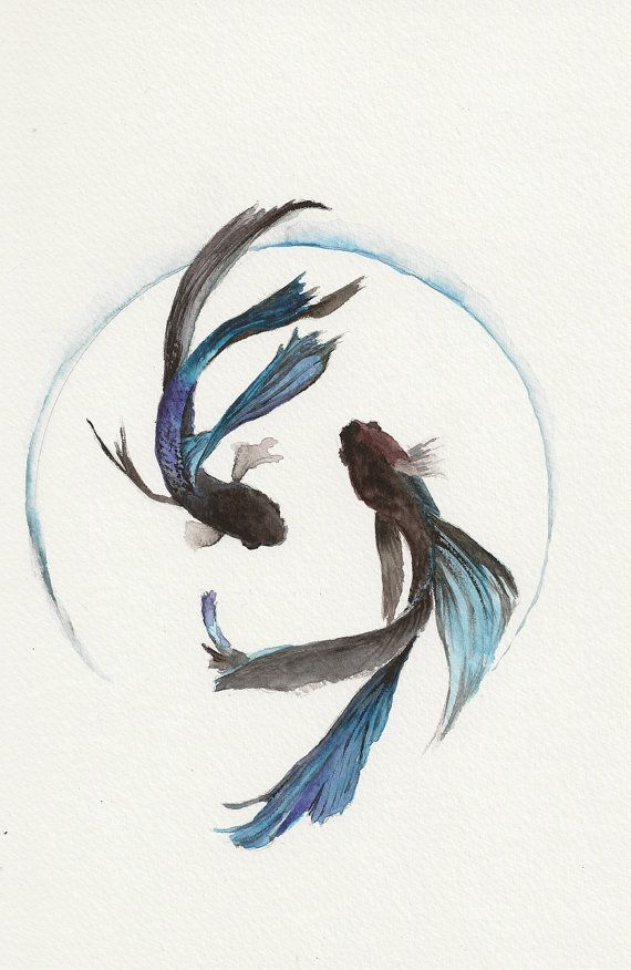 Azul Pez lucha 6 x9 acuarela Original por MidoriAiStudio en Etsy