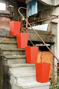 Vibrant red pots that POP! A hint of colour can liven up any space.