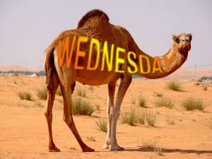 wednesday images | Wednesday Specials, Super Tuesday Special Offers Discounts Promotions ...