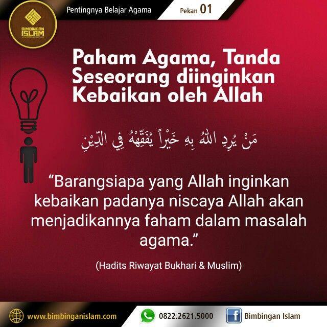 quotes qs at taubah alquran u hadist words