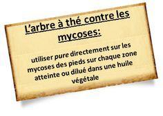 mycoses-pieds-arbre-a-the