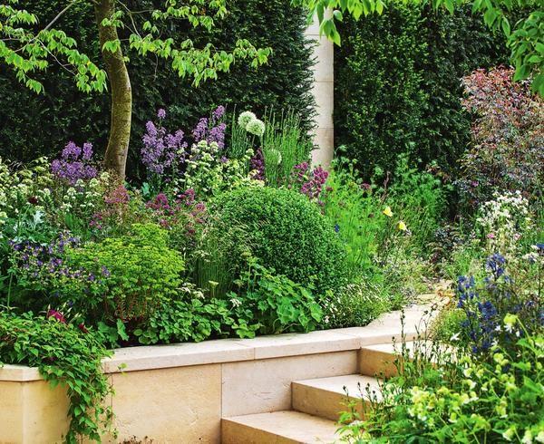 На склоне две зоны элегантно соединяют ступеньки. В прилегающем приподнятом цветнике растут герань, кентрантус, лунник и молочай. Вдоль подпорной стенки живописно свисает клематис.