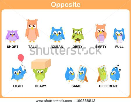 Opposite word for preschool (short, tall, clean, dirty, empty, full, light, heavy, same, different)