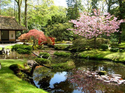 #Tuin #Garden #Jardin   De Japanse tuin is in het begin van dre 20ste eeuw aangelegd door de toenmalige eigenaresse van het landgoed Clingendael.
