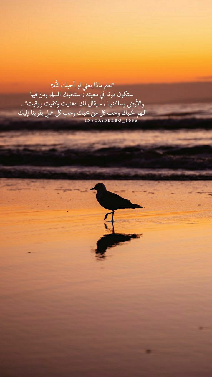 Pin By زخات المطر On باقة فرح Islamic Phrases Movie Posters Poster