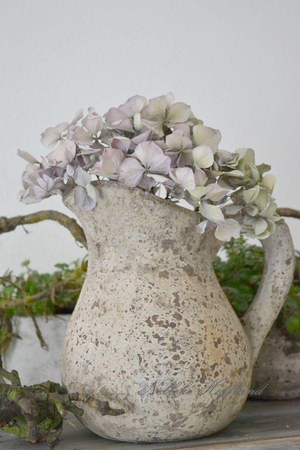 **Gedroogde hortensia in stenen kan**