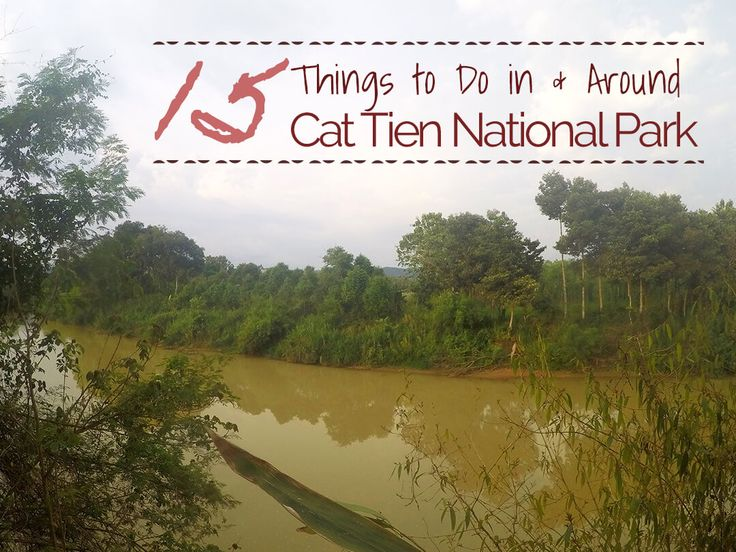 In between Ho Chi Minh & DaLat, Cat Tien National Park is one 72,000 hectares lowland rainforests. Find out how to get there, where to stay and what to do.