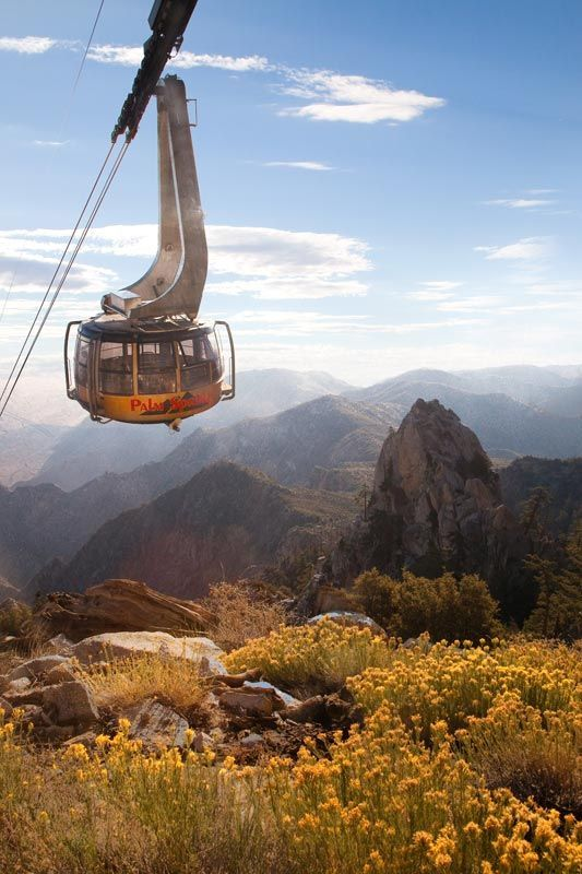 Palm Springs Aerial Tramway |  The ride up the mountain (elevation 8,516 ft) takes about ten minutes and the views from the rotating tramcar are breathtaking.