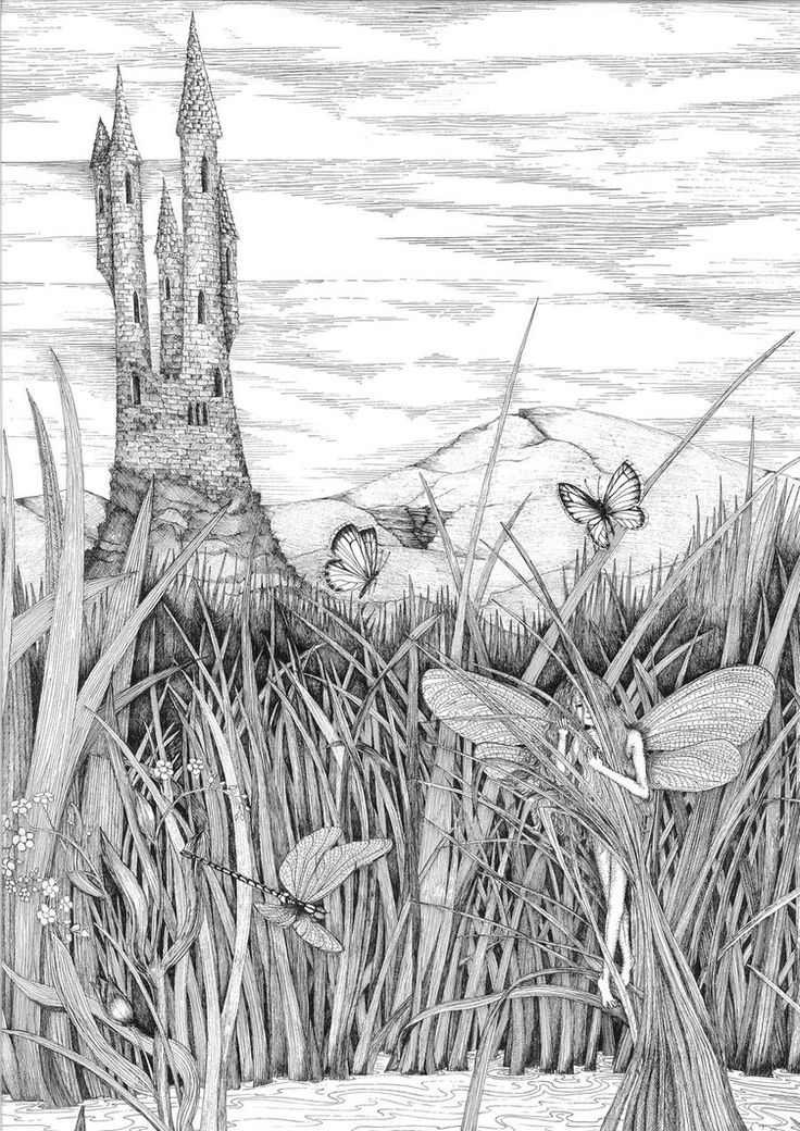 A home and a place of refuge for so many creatures.... line drawing using rotring pens 0.13 0.18 0.25