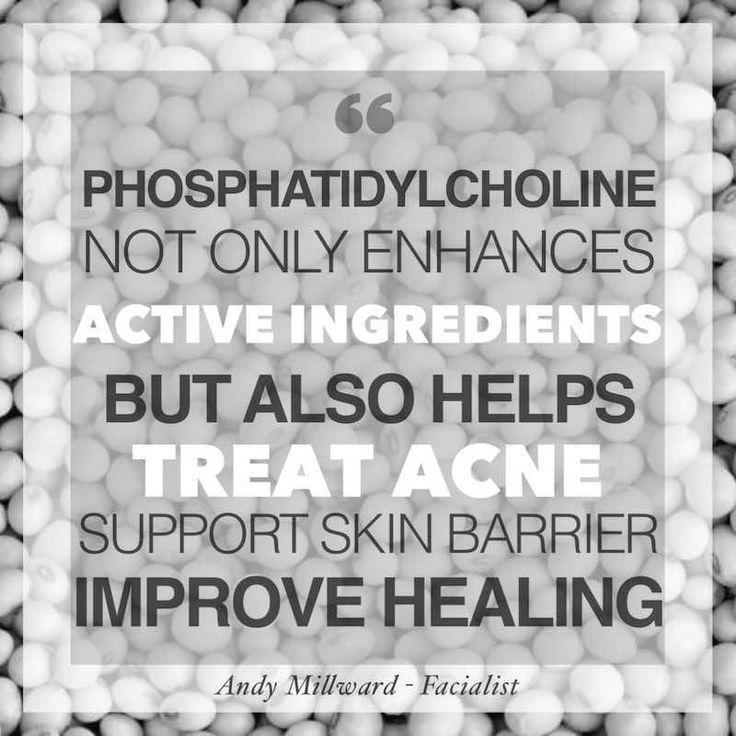 Hautpflege Vorteile von Phosphatidylcholin – Andy …