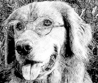 photo converter program  http://www.picturetopeople.org/photo_sketch/realistic_pencil_sketch_photo_effect.html