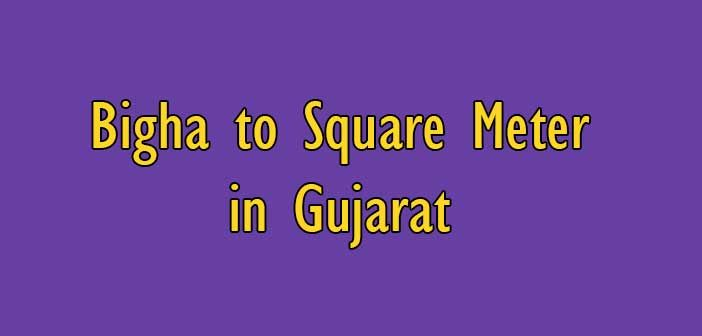 How to measure 1 Bigha to Square Meter in Gujarat | Area