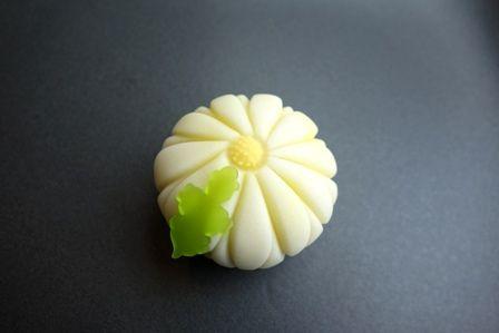 小菊 Kogiku - Chrysanthemum