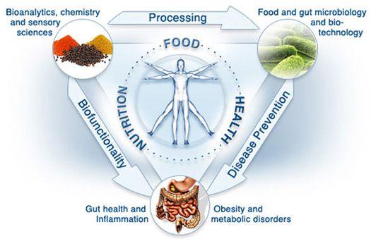 principles functional medicine