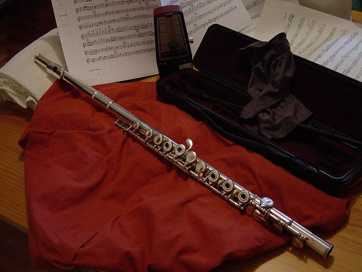 PŘÍČNÁ FLÉTNA Příčná flétna je dechový dřevěný nástroj (ačkoli se dnes příčné flétny vyrábějí téměř výhradně z kovu, její stavba a zvukové vlastnosti ji stále řadí k dřevěným dechovým nástrojům). Je tradičně zastoupena ve všech symfonických, dechových i komorních orchestrech, velké využití má i v komorní hudbě, v menší míře se používá i v jazzu.