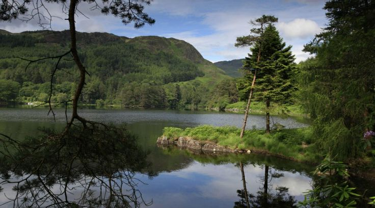 Loch Trool in Galloway Forest Park, near Newton Stewart in Dumfries & Galloway
