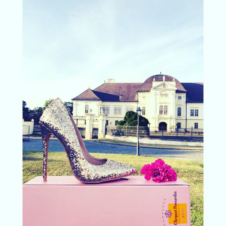 Goldem Heels and Champagne