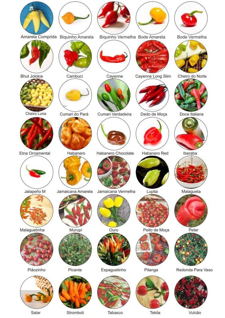 (1) Kit 40 Variedades Sementes De Pimenta Especiais Raras - R$ 36,89 no MercadoLivre